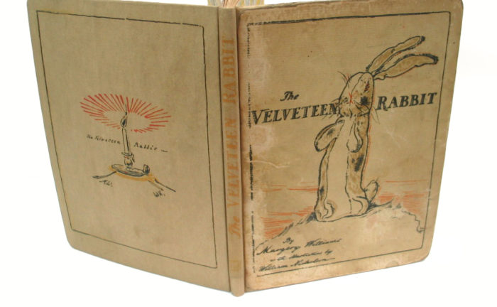 Professional book restoration save your books new solutioingenieria Choice Image